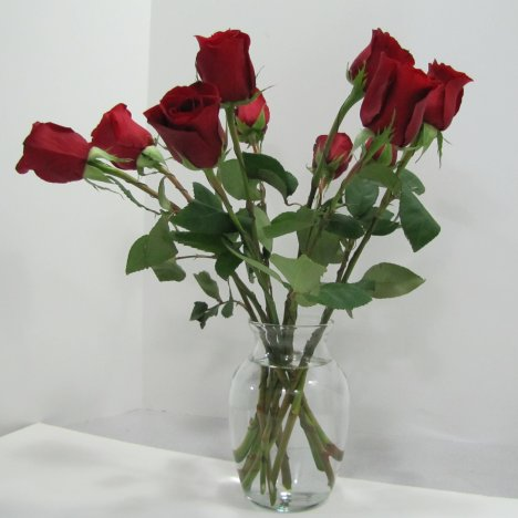 Taking Care Of Roses In A Vase Vase And Cellar Image Avorcor