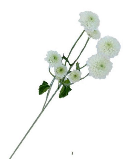 Square Vase Centerpieces Easy Wedding Flower Tutorials For Diy Bride