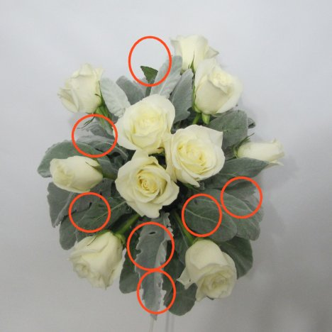 Winter wedding bouquets free flower tutorials later so i although i want the roses to be the focal flowers i dont want a tight pack design that doesnt leave room for the miniature carnations junglespirit Choice Image