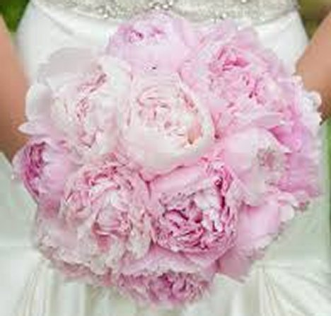 peony wedding bouquet cost wedding flower prices can you save by doing it yourself 6451